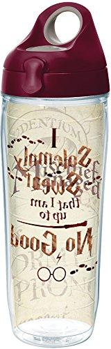 Tervis 1257580 Harry Potter-I Solemnly Swear That I Am up to