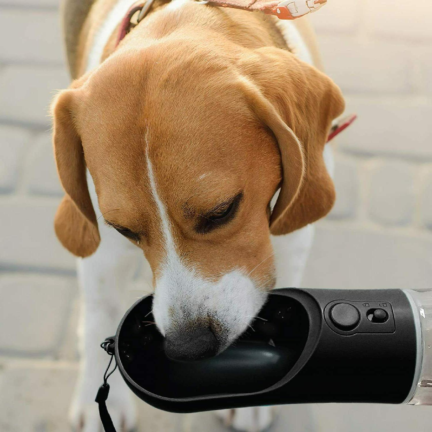 Portable PET WATER BOTTLE Travel DOG WATER on-the-go