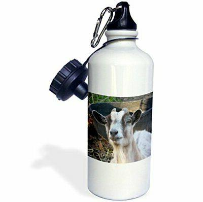 "3dRose wb_21058_1""Grey and white goat"" Sports Water Bottle,"